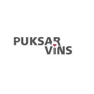 PuksarVinCapture